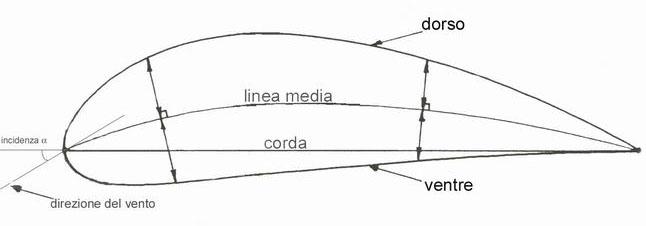Come aumentano la lunghezza di pene